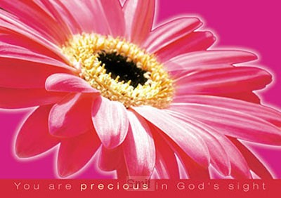 Poster a4 you are precious in Gods sight